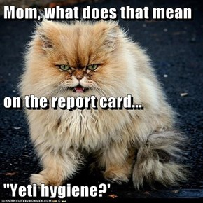 "Mom, what does that mean  on the report card... ""Yeti hygiene?'"