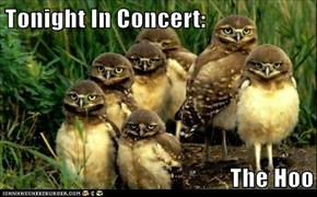 Tonight In Concert:  The Hoo