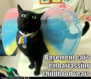 Basement cat's               embarrassing                         childhood years