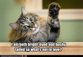 I am both bright-eyed and bushy tailed so what's not to love?