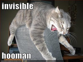 invisible   hooman