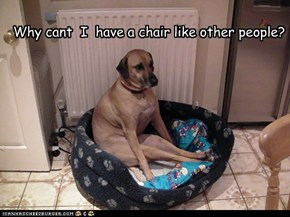 Why cant  I  have a chair like other people?