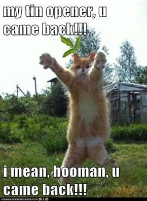 my tin opener, u came back!!!  i mean, hooman, u came back!!!