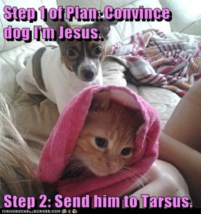 Step 1 of Plan: Convince dog I'm Jesus.  Step 2: Send him to Tarsus.