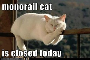 monorail cat  is closed today