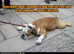 Deary Diary, today I managed to walk from the front door to the sidewalk......whew ! I am tired.