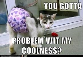 YOU GOTTA  PROBLEM WIT MY COOLNESS?