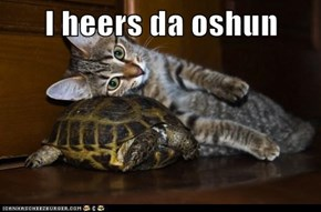 I heers da oshun