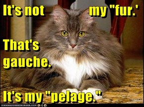 "It's not                my ""fur.' That's                               gauche. It's my ""pelage."""