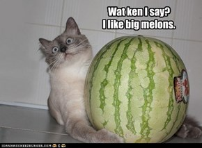 Wat ken I say?  I like big melons.