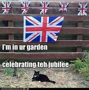 Charlie celebrating teh Jubilee