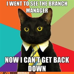 Business Cat: Call Building Maintenance?