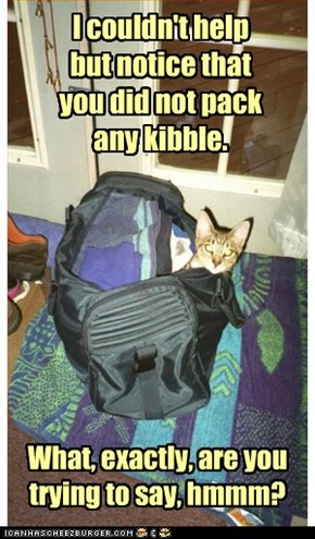 Sublety does not work with kittehs.