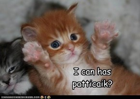 I can has patticaik?