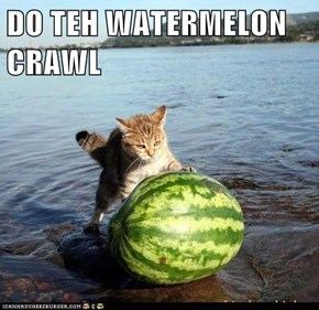 DO TEH WATERMELON CRAWL