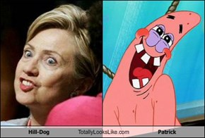 Hill-Dog Totally Looks Like Patrick
