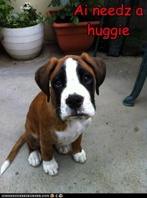 Ai needz a huggie