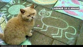 sidewalk cat is amused