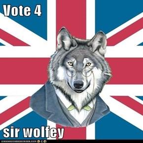 Vote 4   sir wolfey