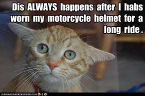 Dis  ALWAYS  happens  after  I  habs  worn  my  motorcycle  helmet  for  a  long  ride .
