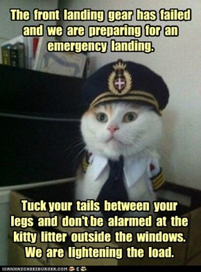 The  front  landing  gear  has  failed and  we  are  preparing  for  an emergency  landing.