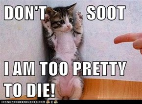 DON'T           SOOT  I AM TOO PRETTY TO DIE!