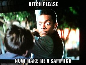 BITCH PLEASE  NOW MAKE ME A SAMMICH