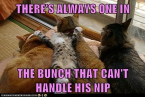 THERE'S ALWAYS ONE IN   THE BUNCH THAT CAN'T HANDLE HIS NIP