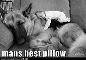 mans best pillow