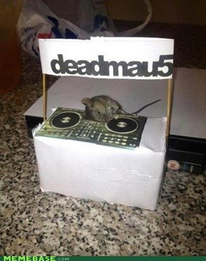 Deadmau5 IRL