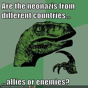 Are the neonazis from different countries...  ...allies or enemies?
