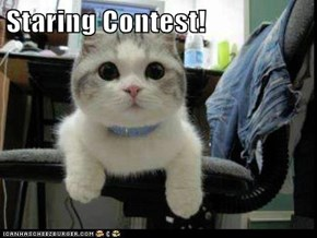 Staring Contest!
