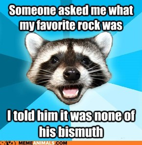 Lame Pun Coon: A Really Gneiss Joke