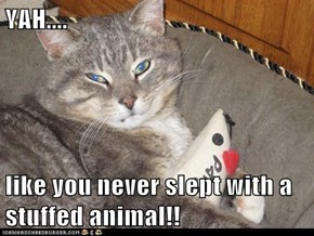 YAH....  like you never slept with a stuffed animal!!
