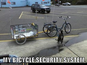 MY BICYCLE SECURITY SYSTEM