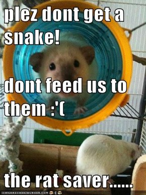 plez dont get a snake! dont feed us to them :'( the rat saver......