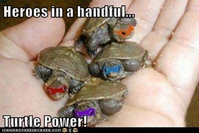 Heroes in a handful...  Turtle Power!