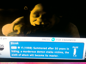"The Perfect ""Shrek"" Summary"