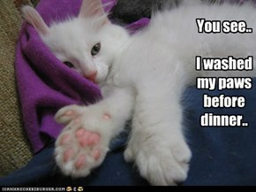 You see..  I washed my paws before dinner..