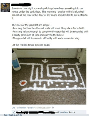 Slug Labyrinth