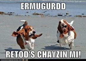 ERMUGURDD  RETOD'S CHAYZIN MI!