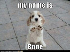 my name is   Bone