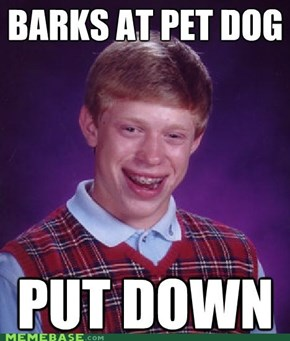 Bad Luck Pup