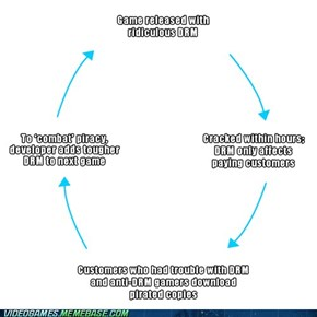 The DRM Cycle