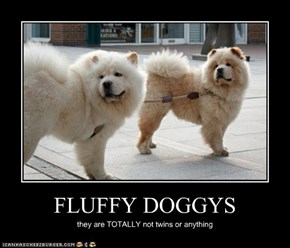 FLUFFY DOGGYS