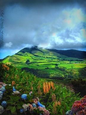 São Miguel Island, Azores, Portugal