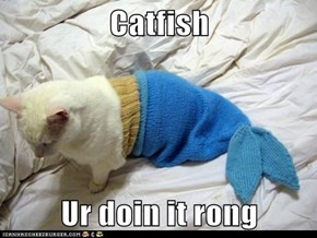 Catfish  Ur doin it rong