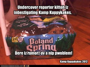 Troubling rumors at Kamp Kuppykakes