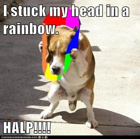 I stuck my head in a rainbow.  HALP!!!!
