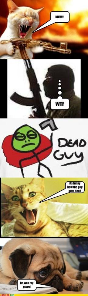 cat kills dog